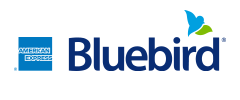 Financial Services – American Express Bluebird logo.